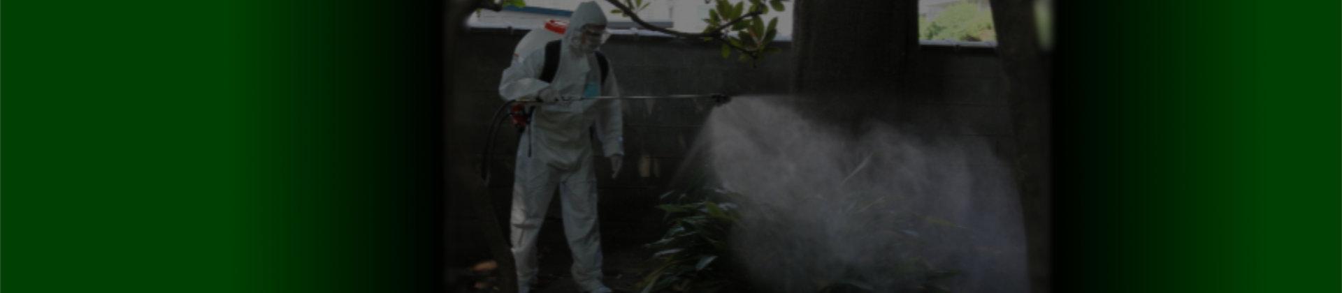 殺虫剤研究班